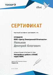 Сертификат СБИС - настройка и работа с ЕГАИС через СБиС